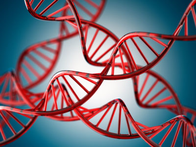 The Dark Corners of Our DNA Hold Clues about Disease (Scientific American)